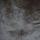 EdmondPetit-Lumiere-15554-5-brun