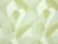 Lelievre-Tchin-M1-0735-03-Eclat
